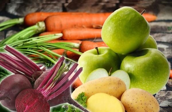 BARF pürierter Rote Beete, Apfel, Kartoffel, Möhren-Mix für Hunde und Karten
